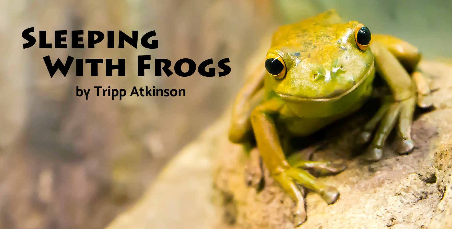 Header for Tripp Atkinson Sleeping with Frogs